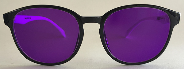 Purple tint retro sunglasses-front