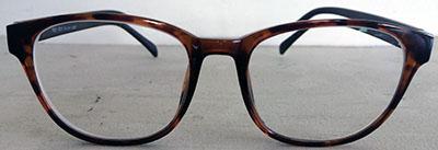 Round Wayfarer eyeframes