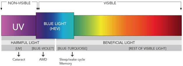 blue light blocking - the light spectrum