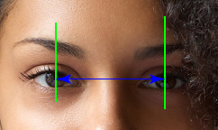 the distance between your pupils is your horizontal PD